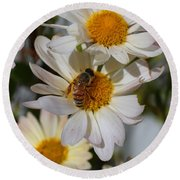Honeybee And Daisy Mums Round Beach Towel