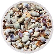 Honeymoon Island Shells Round Beach Towel