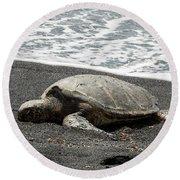 Honu Sleeping On The Shoreline At Punalu'u Round Beach Towel