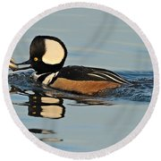 Hooded Merganser And Eel Round Beach Towel