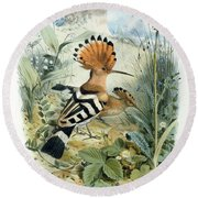 Hoopoe Round Beach Towel by Edouard Travies