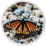 Hope Of The Monarch Butterfly Round Beach Towel