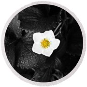 Hope Tucked Away In The Petals  Round Beach Towel