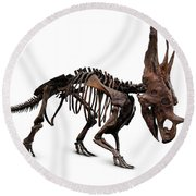 Horned Dinosaur Skeleton Round Beach Towel