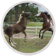 Horse Aerobics Round Beach Towel