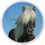 Horse And Blue Sky Round Beach Towel