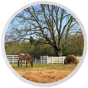 Horse And Hay Round Beach Towel