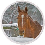 Horse And Snowflakes Round Beach Towel
