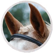Horse At Attention Round Beach Towel