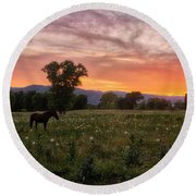 Horse At Sunset Round Beach Towel