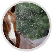 Horse Bath I Round Beach Towel