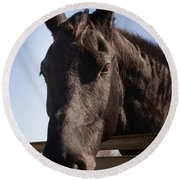 Horse By A Fence. Round Beach Towel