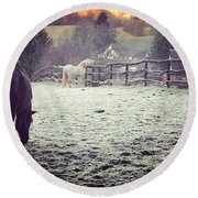 Horses On A Frosty Pasture Round Beach Towel