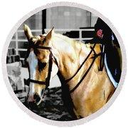 Horse Equus Ferus Caballus V2 Round Beach Towel