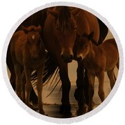 Horse Family  Round Beach Towel