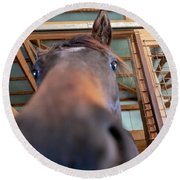 Horse Hello Round Beach Towel