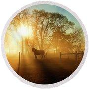 Horse In The Fog At Dawn Round Beach Towel