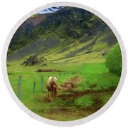 Horse On The South Iceland Coast Round Beach Towel