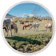 Horse Pasture Round Beach Towel