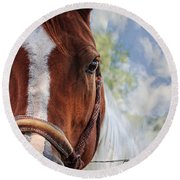 Horse Portrait Closeup Round Beach Towel