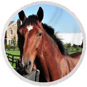 Horse Profile Round Beach Towel