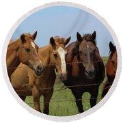 Horse Quartet Round Beach Towel