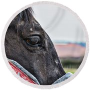 Horse Riding Horse Round Beach Towel