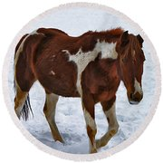 Horse With No Name Round Beach Towel