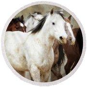 Horses-01 Round Beach Towel