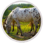 Horses And Buttercups Round Beach Towel