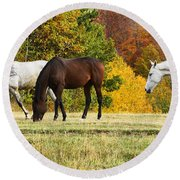 Horses In Autumn Round Beach Towel
