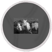Horses In Black And White Round Beach Towel
