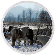 Horses In Front Of Quaggy Jo Round Beach Towel