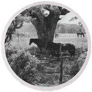 Horses In The Pasture Round Beach Towel