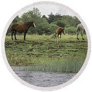 Horses On Ireland's River Shannon Round Beach Towel