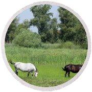 Horses On Pasture Nature Farm Scene Round Beach Towel