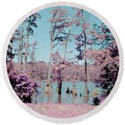 Horseshoe Conservation Area Infrared Round Beach Towel
