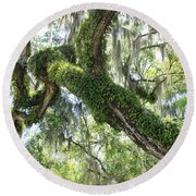 Host Tree Round Beach Towel