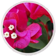 Hot Pink Bougainvillea Round Beach Towel
