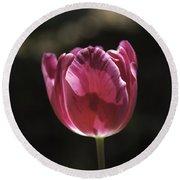 Hot Pink Tulip Squared 02 Round Beach Towel