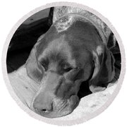 Hound Dog Round Beach Towel
