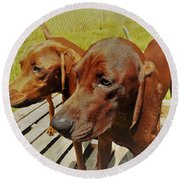 Hounds Round Beach Towel