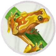 Hourglass Frog Round Beach Towel