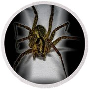 House Spider Round Beach Towel