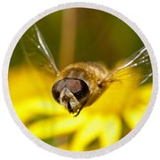 Hoverfly In Flight Round Beach Towel