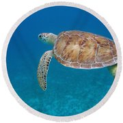 How Green It Is Round Beach Towel