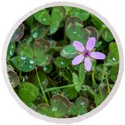 Huge Beauty In A Small Wildflower Round Beach Towel