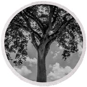 Huge Tree 12 Round Beach Towel