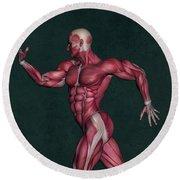 Human Anatomy 29 Round Beach Towel