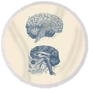 Human Brain - Central Nervous System - Vintage Anatomy Print Round Beach Towel